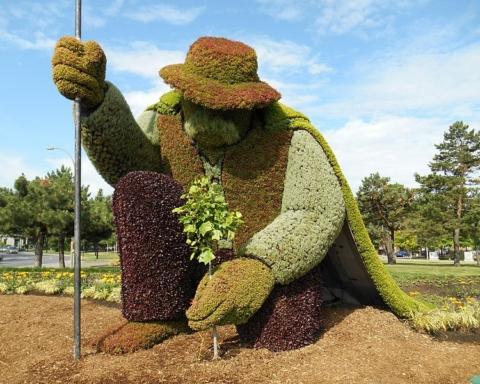 uomo che piantava gli alberi