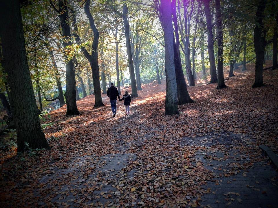 Camminare nella natura: i benefici