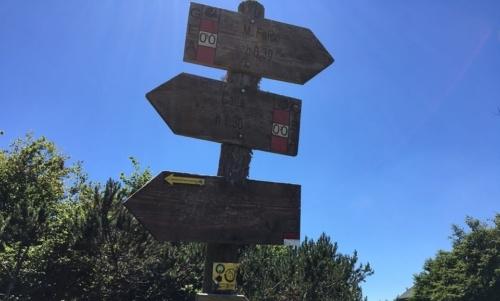 Cammino di Dante: include tratti pianeggianti e tappe più impegnative. Fonte: pagina Facebook Il Cammino di Dante