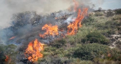 Incendi in Piemonte. Foto: regione.piemonte.it