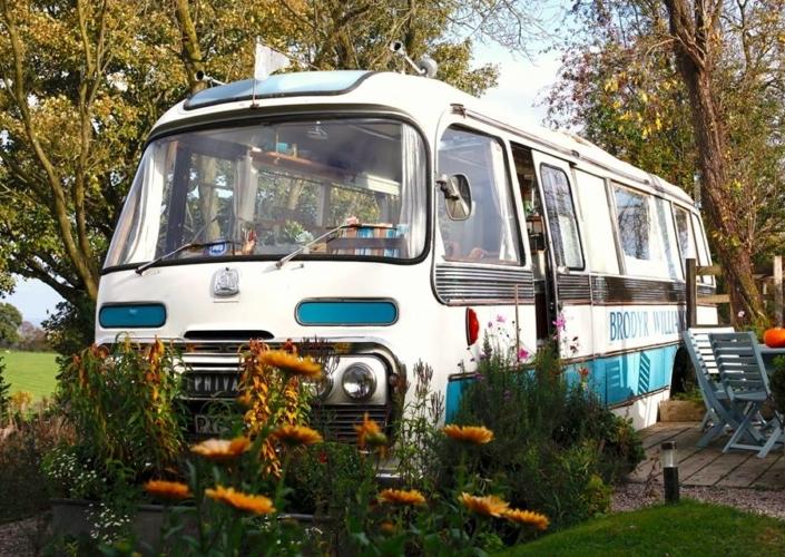majestic bus