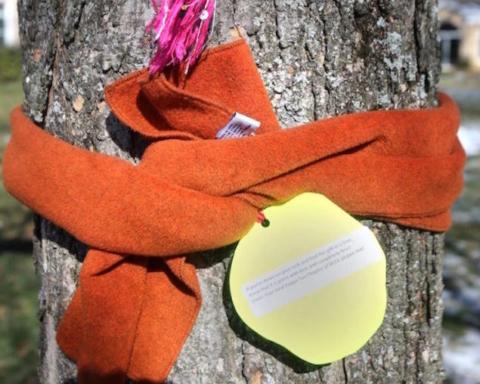 sciarpe alberi messaggio