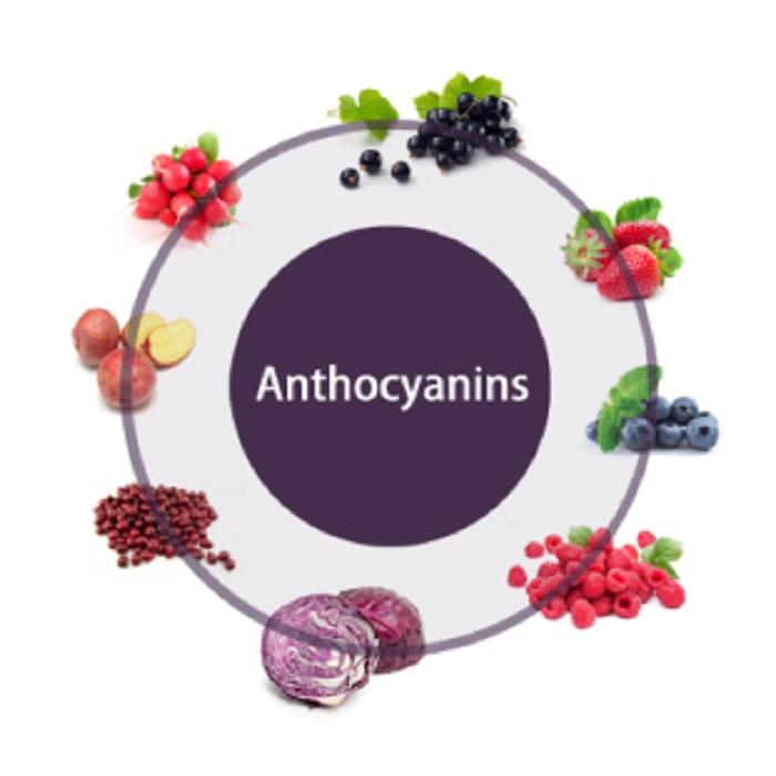 alimenti che contengono antocianine
