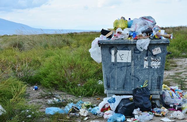 rifiuti cassonetto
