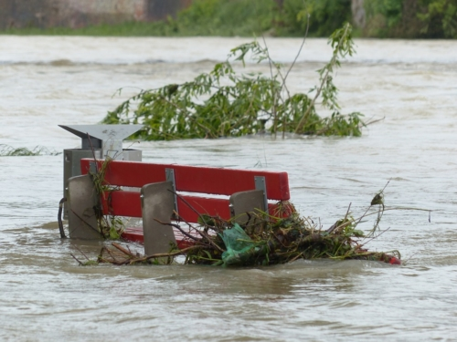 cambiamenti climatici e rifugiati ambientali