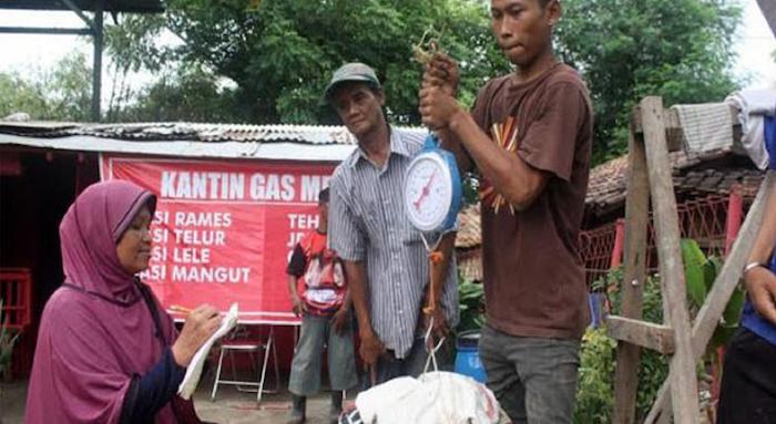 indonesia pso rifiuti
