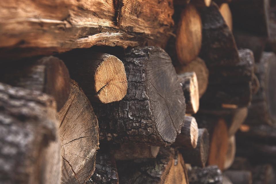 Catasta di legna