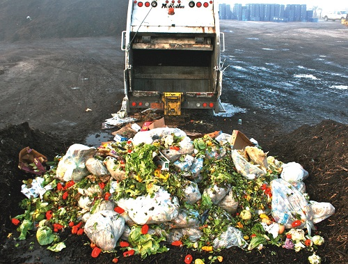 spreco-alimentare-danni-ambientali