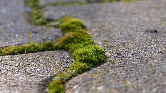 consumo di suolo cemento