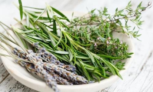 Erborista: è un professionista laureato in grado di coltivare, raccogliere, riconoscere e miscelare le erbe officinali.