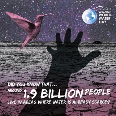 giornata mondiale acqua