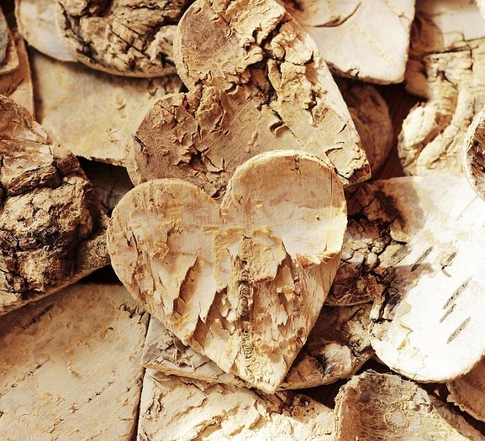 legno betulla