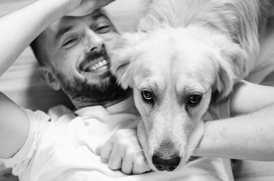 Pet Therapy all'Università