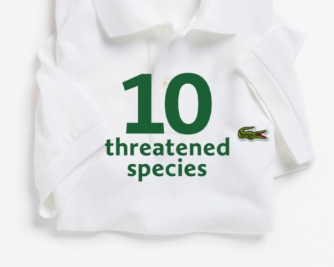 Save Our Species: 1775 polo Lacoste per proteggere la natura