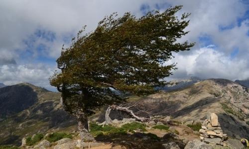 GR 20: è una traversata della Corsica da nord a sud e rappresenta uno dei percorsi più duri dEuropa.