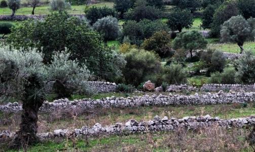 Cammino Ibleo: permette di ripercorrere lantico tracciato della viabilità rurale nel cuore nascosto della Sicilia.