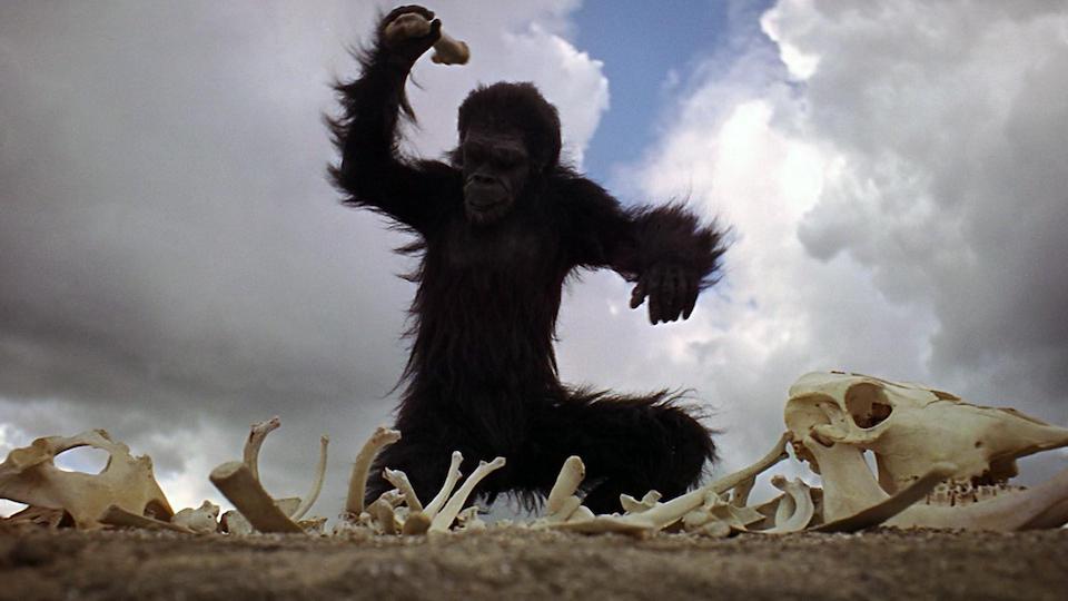 odissea_nello_spazio_scimmia