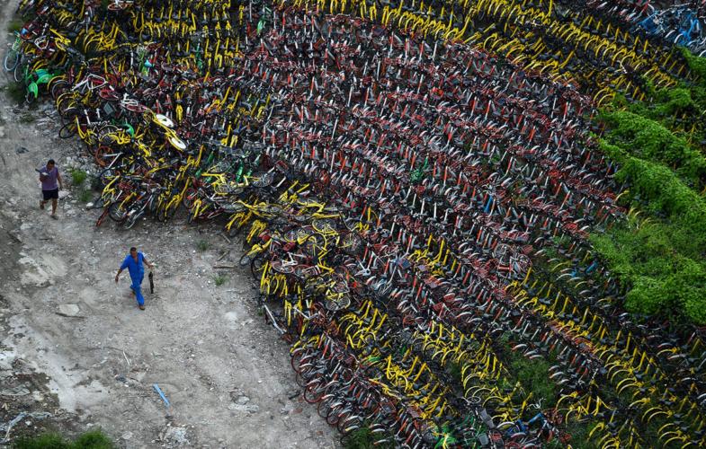 surplus-bike-share-14-785x500.jpg