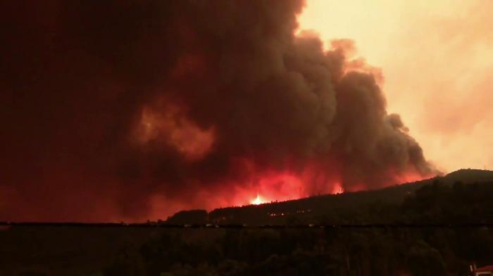 deserto verde incendi