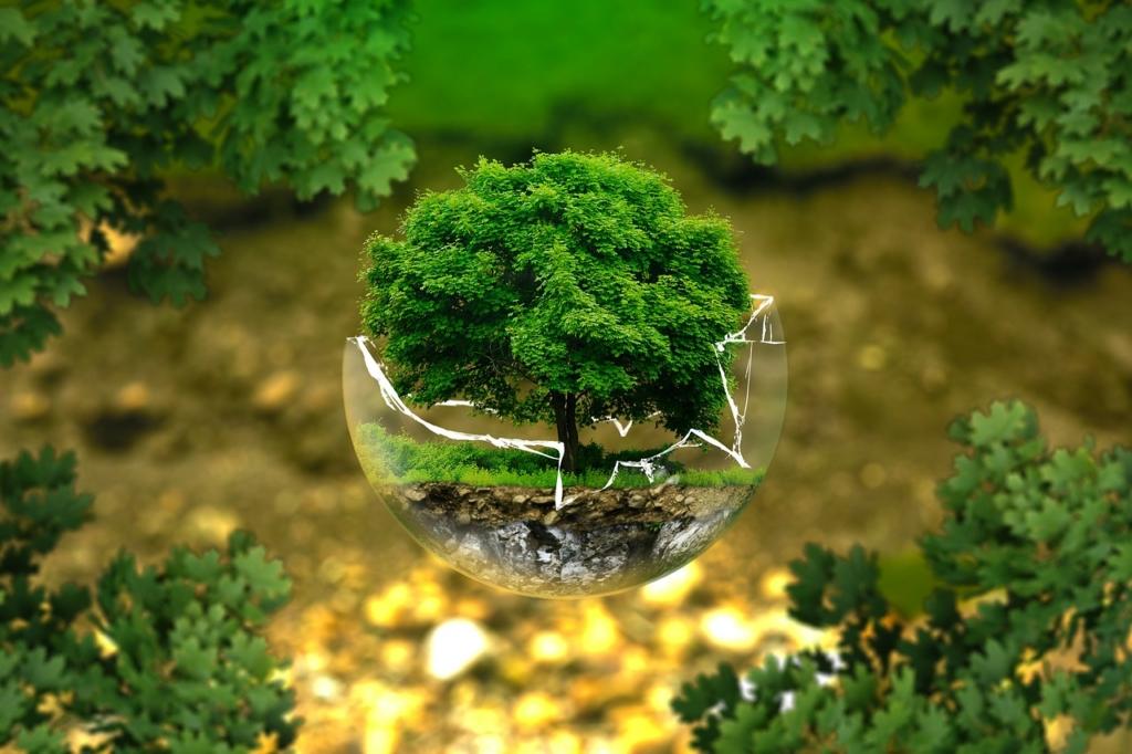 Economia Circolare. Tutela dell'ambiente