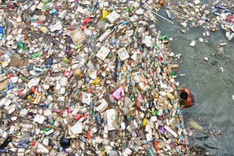 plastic-crisis-impact-on-wildlife-national-geographic-june-issue-cover-21-5afd8541555fe__880