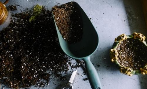 Orto sul balcone: cimentandosi con il fai-da-te si possono coltivare piante in ambiente domestico.