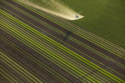 sistema-agroalimentare-inquinamento-agricoltura-steinmetz