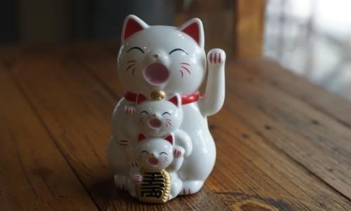 Villaggio dei gatti, insieme ai maneki neko e ai cat cafè descrive lamore del Giappone per gli esemplari felini.
