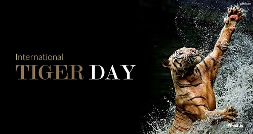 Tiger-Day-Main