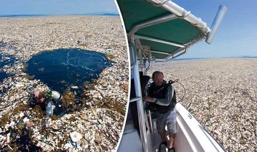 barriere-galleggianti-cattura-plastica-inquinamento-marino-Honduras