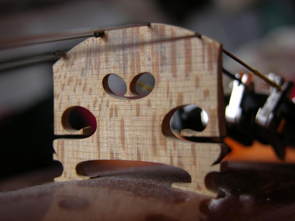 Violino: dettaglio