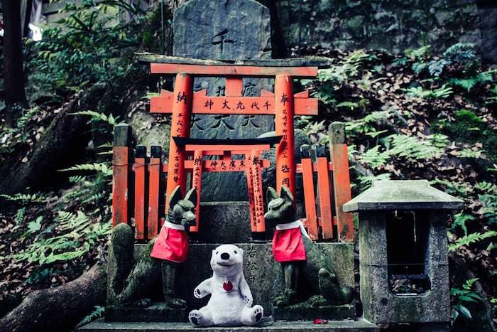 Polo-Polar-Kyoto.jpg