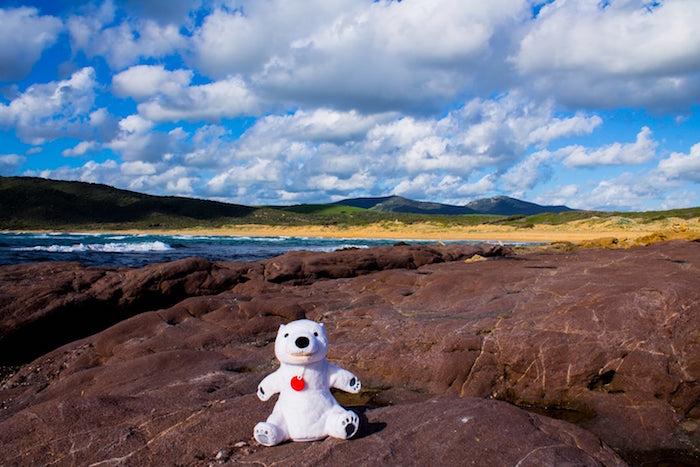 Polo-Polar-Spiaggia-di-Porto-Ferro-2.jpg