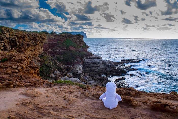 Polo-Polar-spiaggia-di-Porto-Ferro.jpg