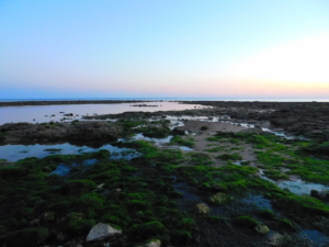 Il fenomeno dalla bassa marea al tramonto