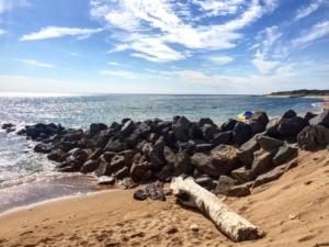 Le spiagge selvagge di Oléron - versante Ovest