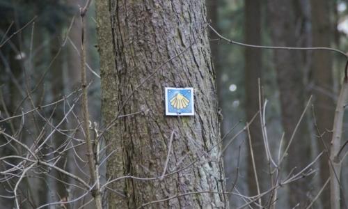 Jakobsweg Sudtirol: lungo il percorso sono presenti simboli della tradizione di San Giacomo e del Cammino di Santiago.