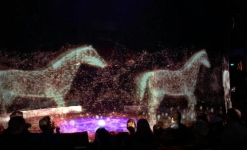"""Circus Roncalli: spettacolari proiezioni luminose al posto degli animali in carne ed ossa. Fonte foto: pagina FB """"Circus Roncalli"""""""