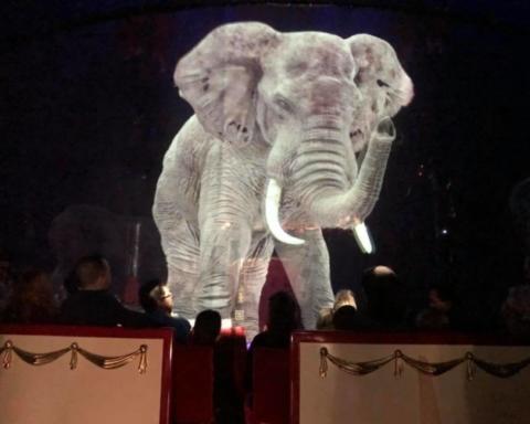 "Fonte foto: pagina FB ""Circus Roncalli"""
