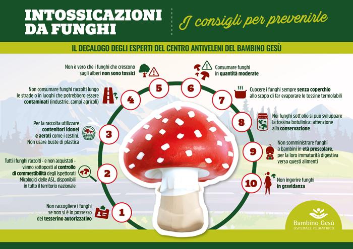 Funghi velenosi: il vademecum del Bambino Gesù per non correre rischi