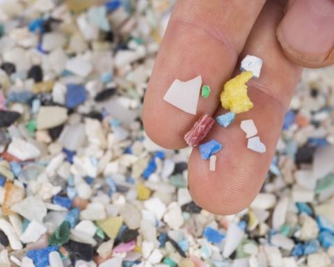 Microplastiche nelle feci umane
