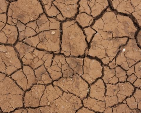 rapporto ONU-IPCC