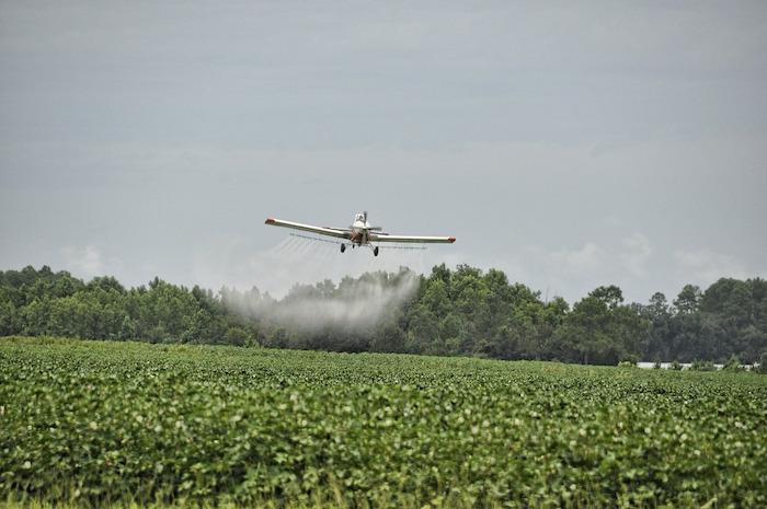 jeans pesticidi