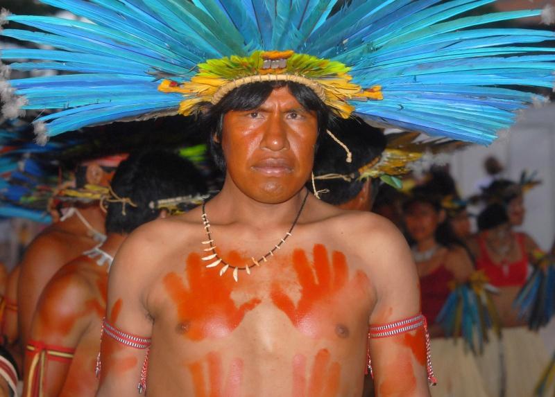 diritti di Madre terra: indigeno, Bolivia