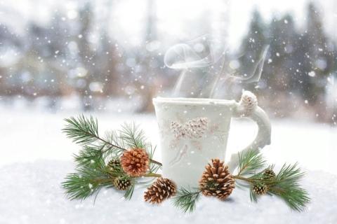 tisana-detox-inverno