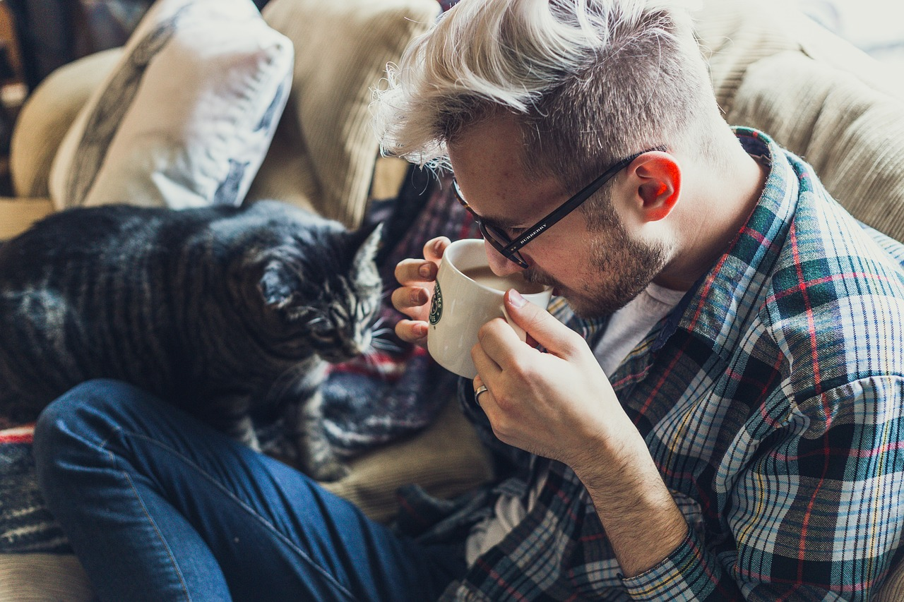 Accogliere un gatto in casa è un'esperienza arricchente