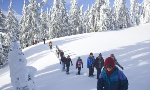 Ciaspolate invernali