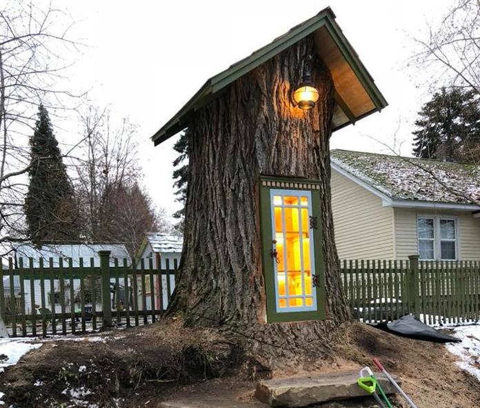 Librerie Gratuite: la libreria nell'albero