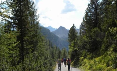 Passaggio chiave: la montagna come terapia