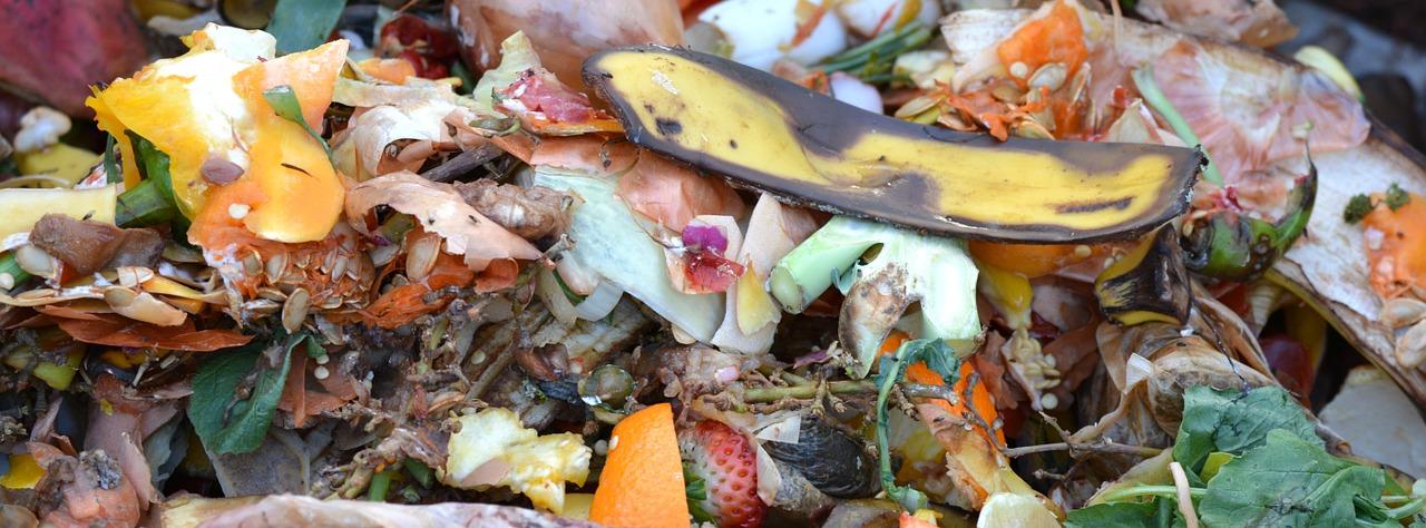 In Francia compostaggio dei rifiuti organici nei fast food